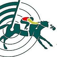 Ставки на скачки с Horse Racing Radar