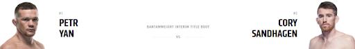 Ставки на UFC 267: Петр Ян - Кори Сандхейген